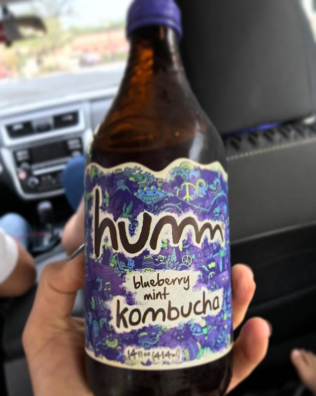 excited when traveling and get to taste #kombucha makers i follow on IG! so great @hummkombucha
