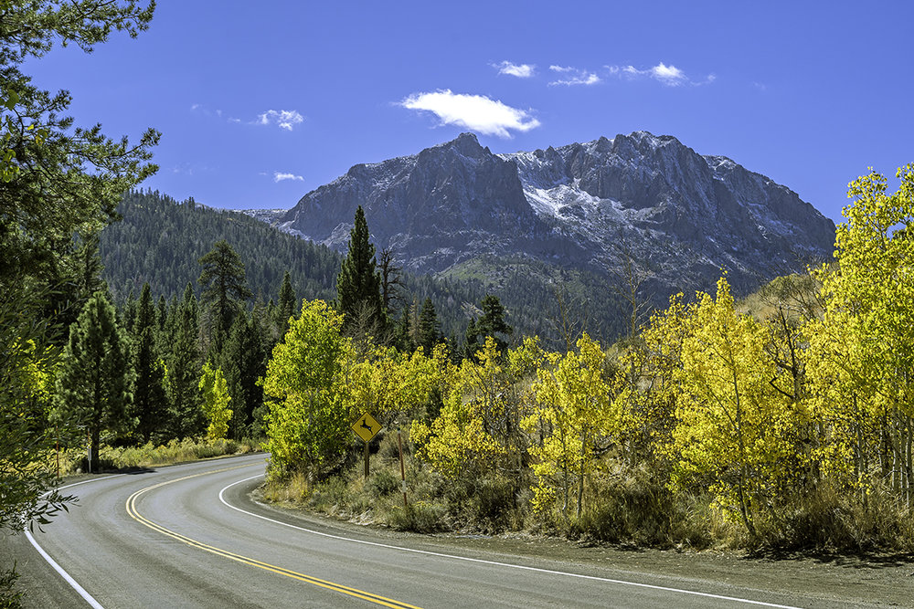 The June Lake Loop is full of twists and turns, one more picturesque than the other. With the Autumn leaves lighting up the road, you can't help but stop to take in the scenery.