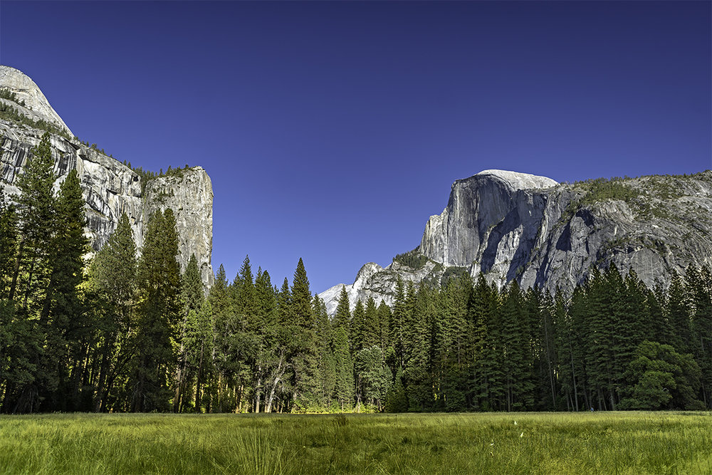 The Royal Arches and Half Dome, as I hike through a meadow.