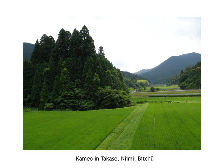 2011_Takahashi_Niimi_Pictures.007.jpeg