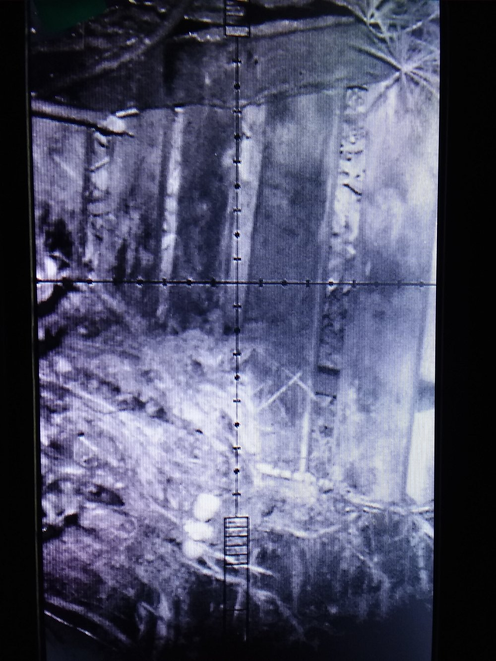 The compost pile, a favorite hangout for local rodents. Custom aspheric IR illuminator at only ~60 meters as seen through our digital night vision setup.