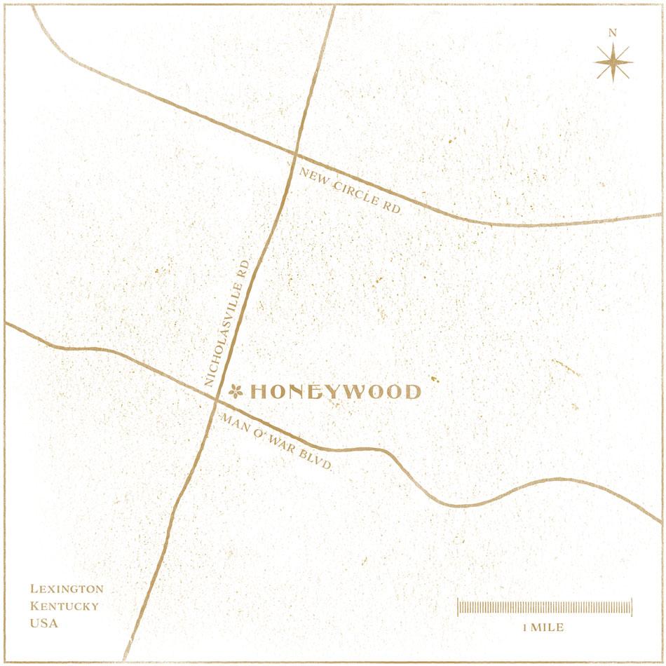 honeywood-map-distress-20.jpg