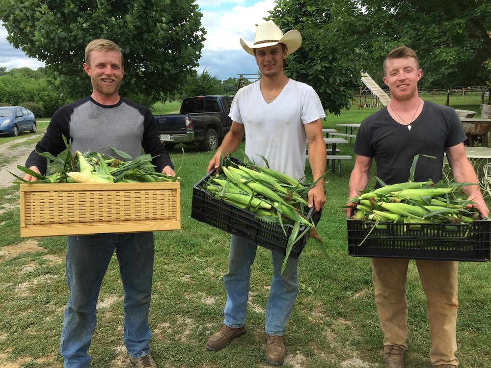 The fellows at Happy Jack's in Frankfort delivered our first sweet corn at Honeywood this week: from left, David Jones, Logan Duke and Adam Jones, at Happy Jack's. Chef Josh made a delicious corn salad for his specials board.