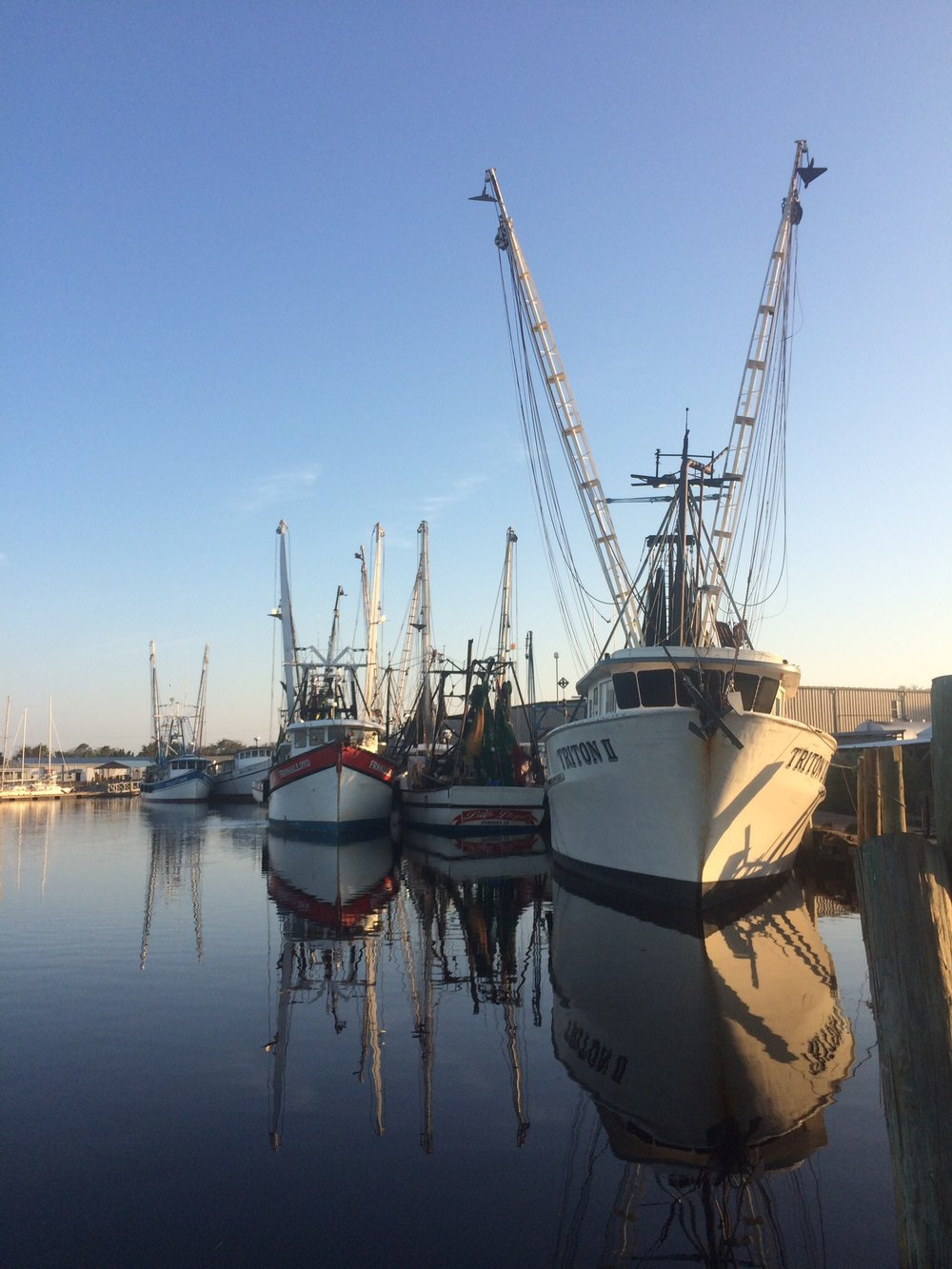 Calm after the storm: Shrimp boats at St. Augustine looked great, but were still moored this week.