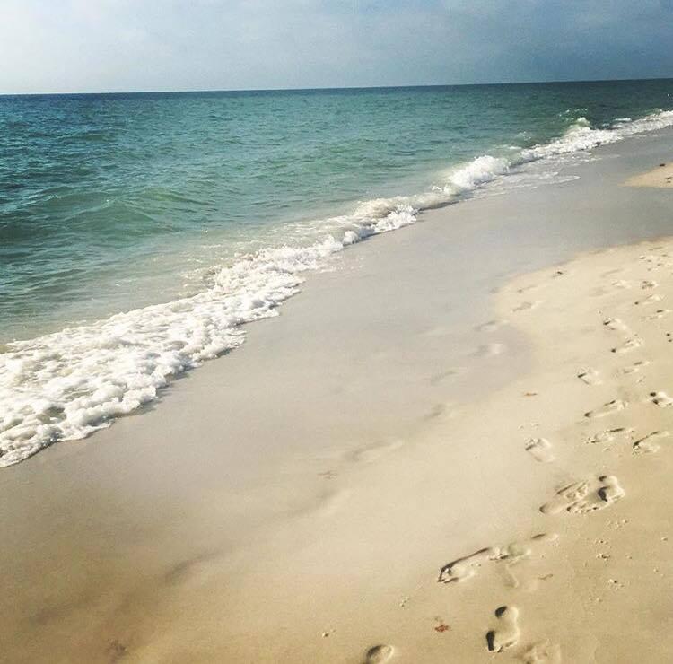 Coast is Clear Blog1.jpg