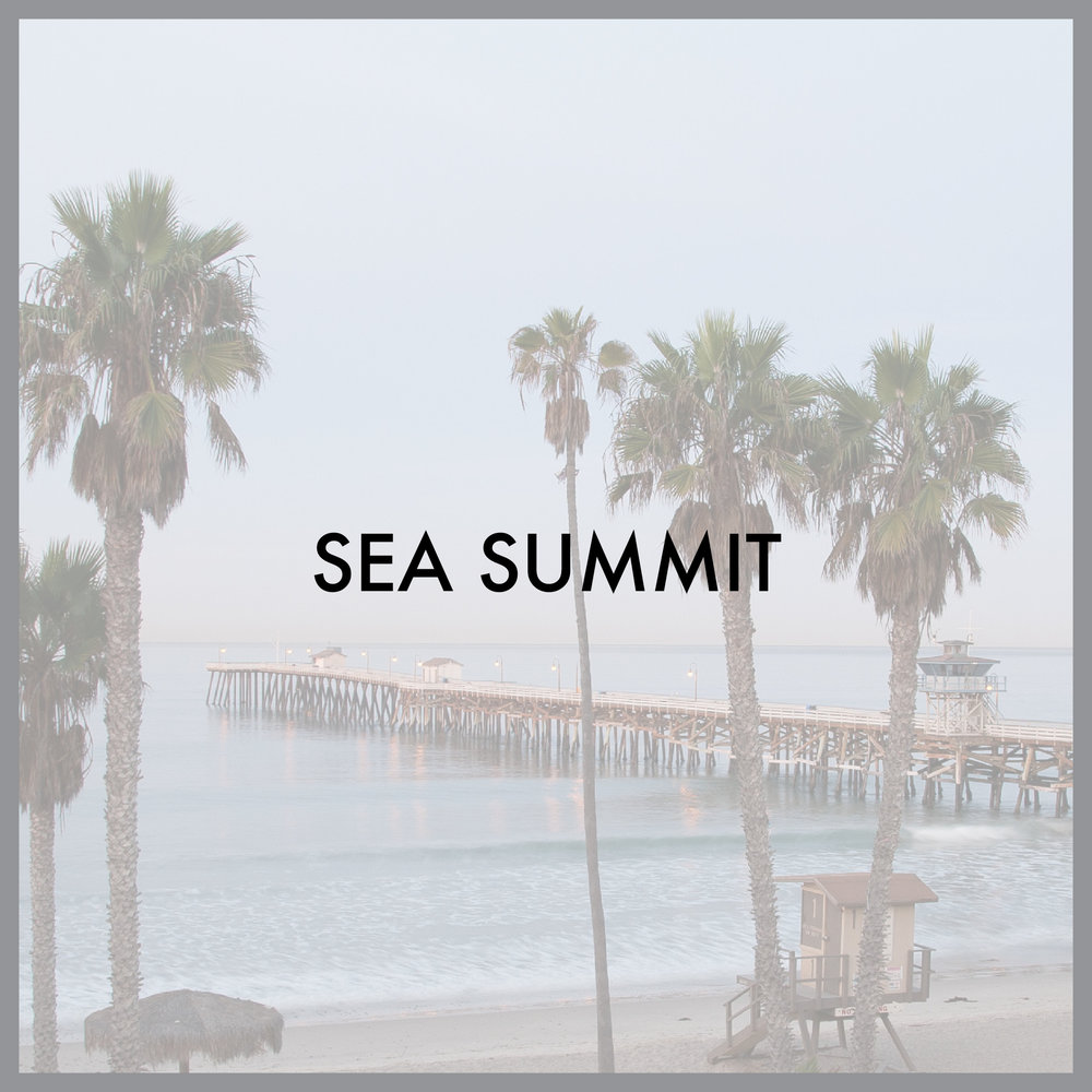 SEA summit.jpg