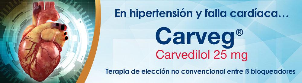 Banner Carveg