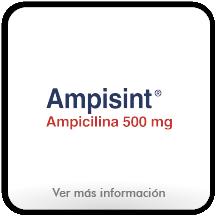 Botón Amisint.png
