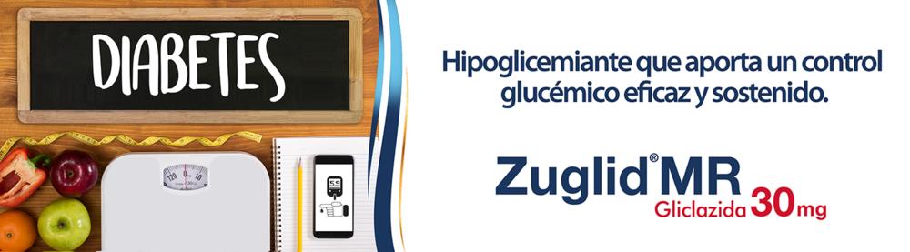 Banner Zuglid MR.png