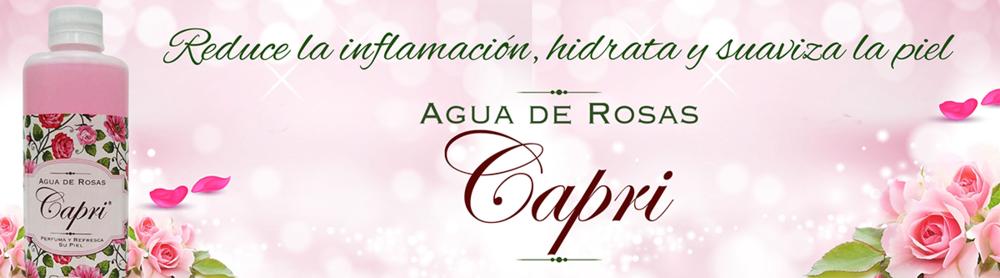 Banner Agua de Rosas.png
