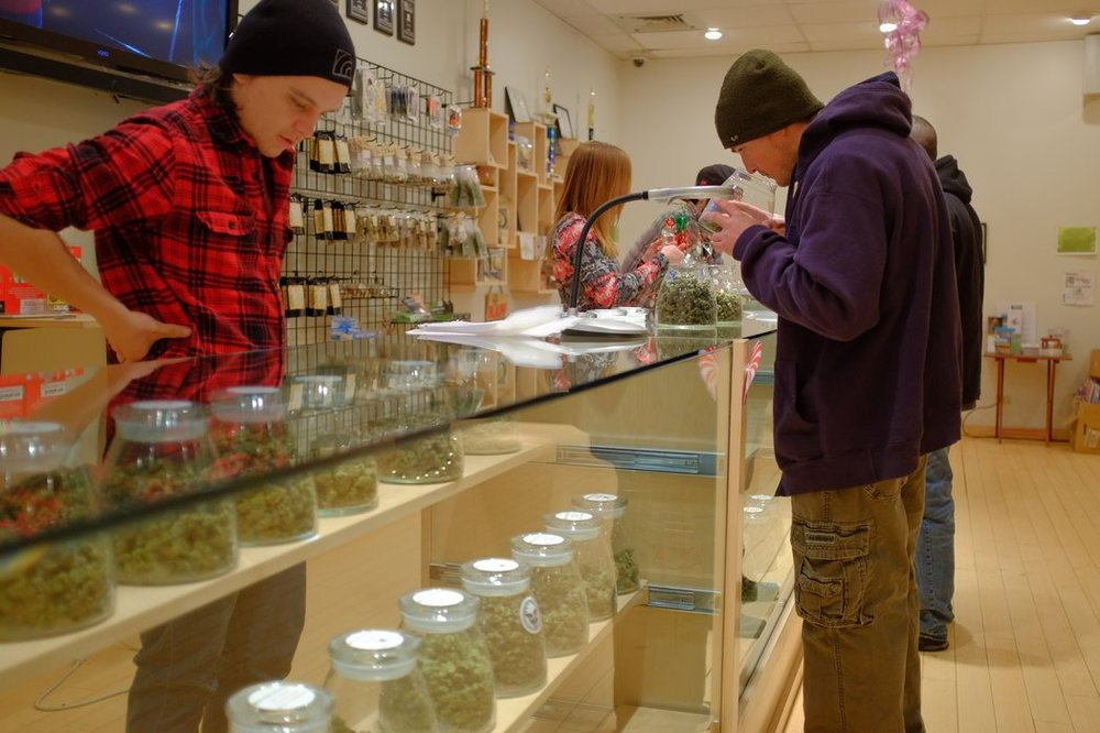 Marijuana-3-master1050nytimes.jpg