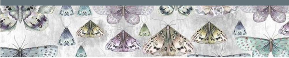 Butterfly Banner.jpg