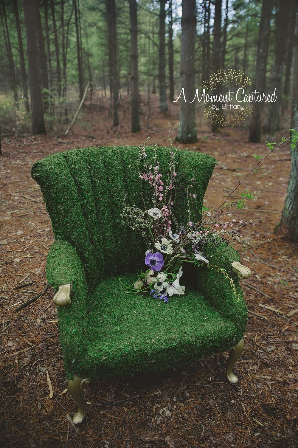 A Moment Captured, by Brittany: Photo  Aunt Willies Wild Flowers: Bouquet  Item Used: moss chair