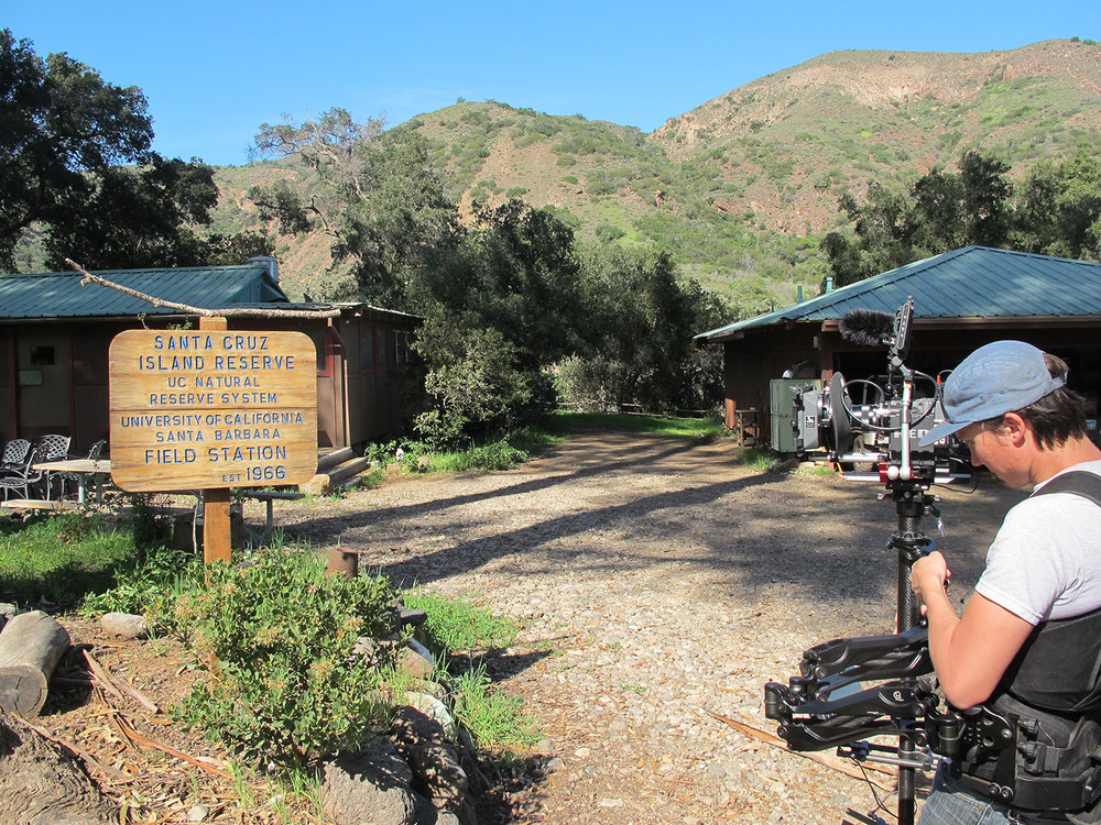 UC Santa Barbara Field Station on Santa Cruz Island was HQ for restoration projects
