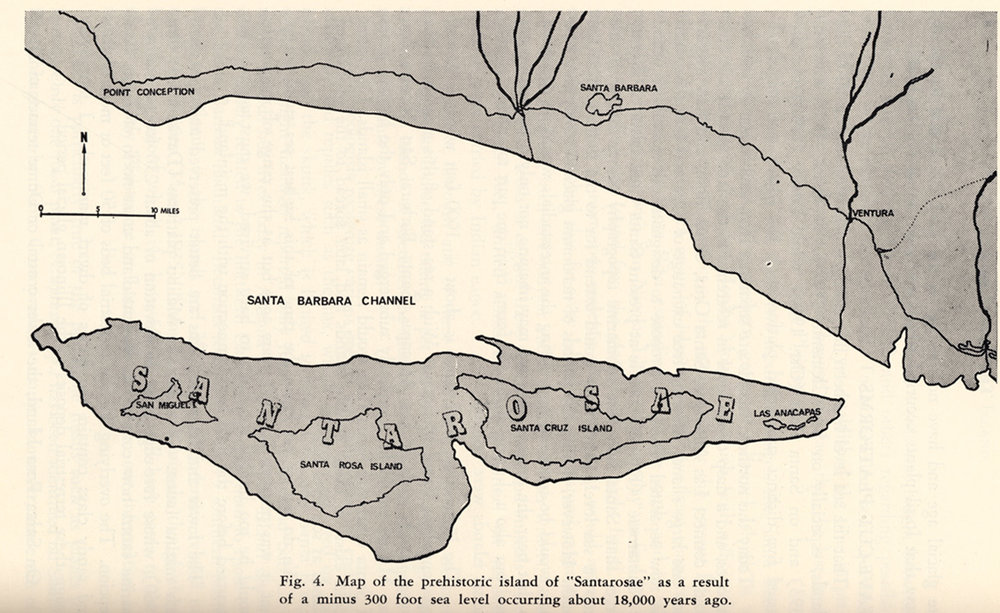 Before the end of the ice age, the oceans were about 300 feet lower and today's 4 northern Channel Islands were one large island known as Santarosae