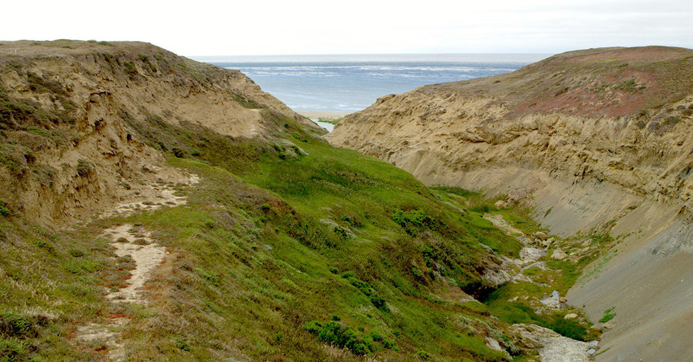 The Arlington Springs area of Santa Rosa Island, site of the oldest known human remains in North America