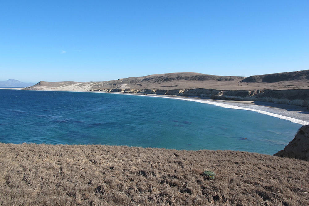 For most of the 20th Century, the Vail and Vickers cattle ranch operated on Santa Rosa Island. For thousands of years before that, these shores were home to Island Chumash villages