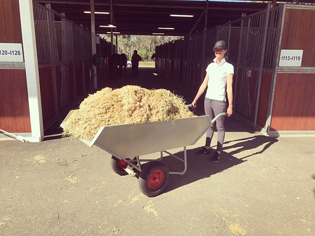 Another product of ours that was in hot demand at the NSW state champs was our aluminium dump carrier! One of the riders called it the Rolls Royce of wheelbarrows and we would have to agree with them 💪🏼 #lifemadeeasier #flaneurequine #qualitystableproducts #availableinaustralia #germanmade