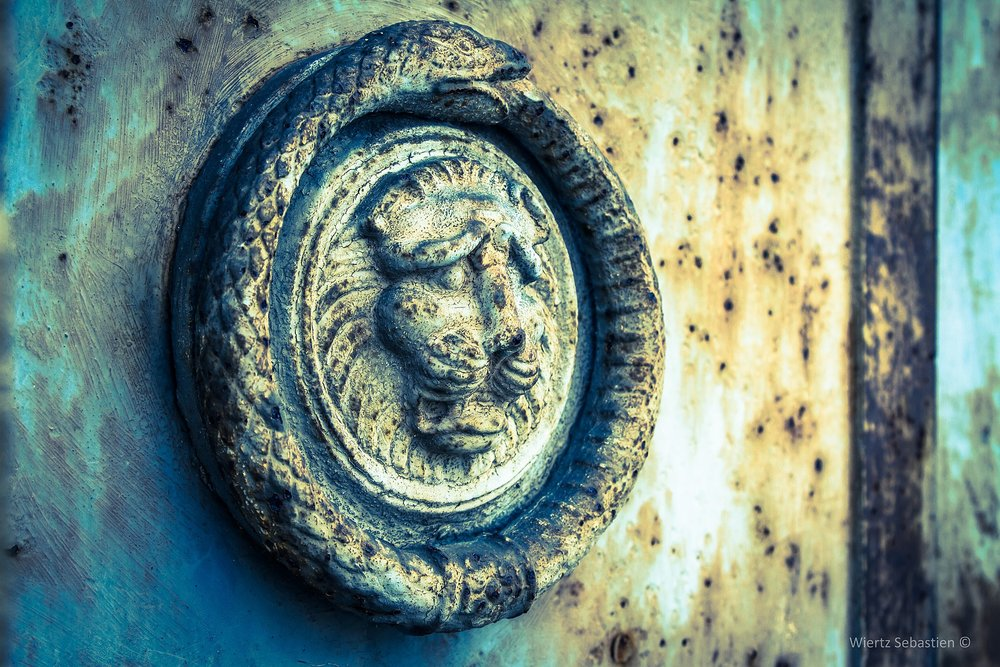 Ouroboros on a cemetery door   by Swiertz (Creative Commons)