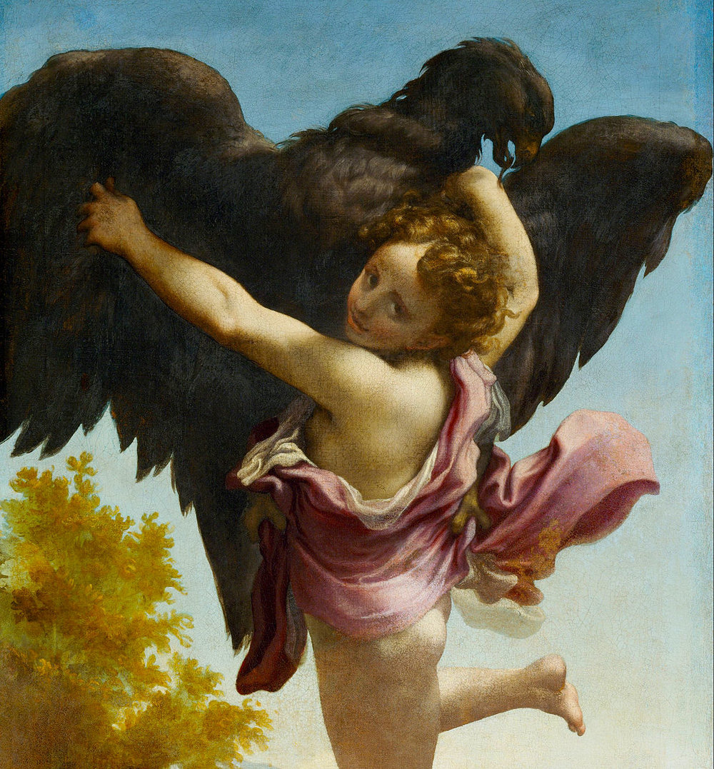 Ganymede Abducted by the Eagle   by Antonio da Correggio.