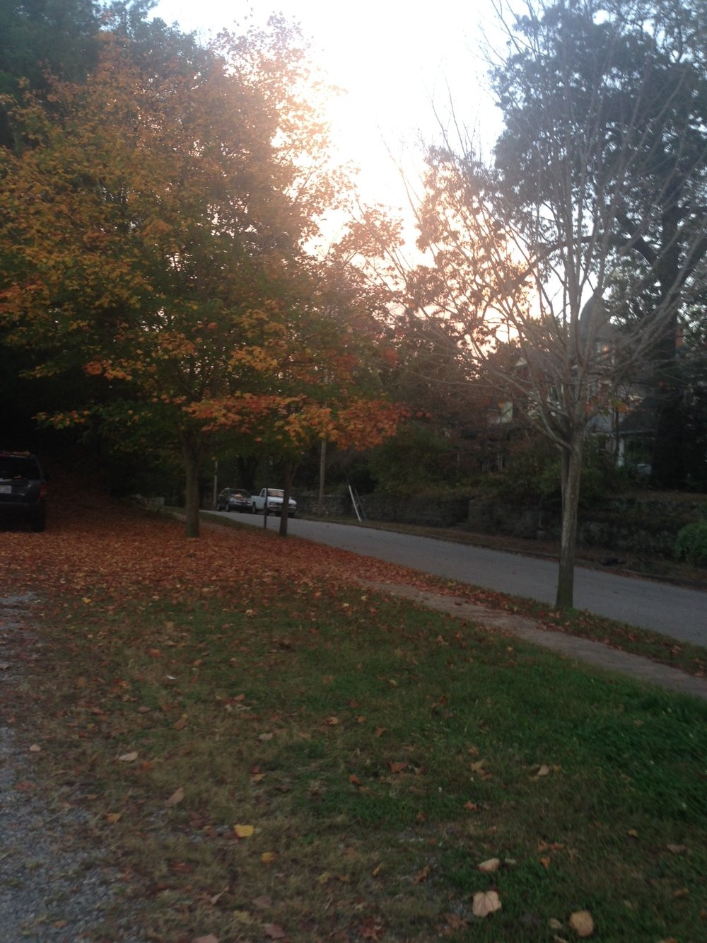 Fall scenes in the Montford neighborhood