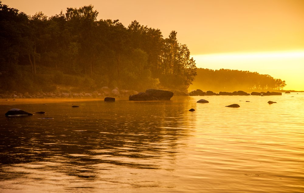 Rainy golden hour at Muraste Nature Reserve, Estonia   by Kristoffer Vaikla (Creative Commons)