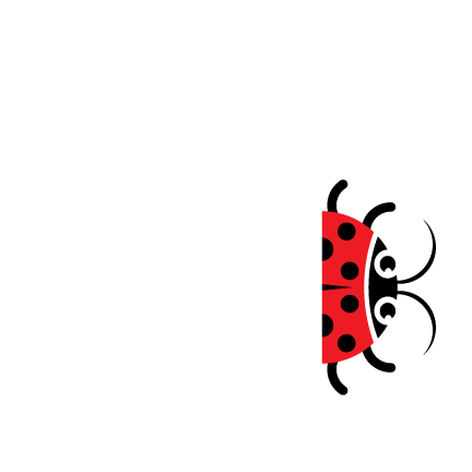 Lady Bugg Bakery
