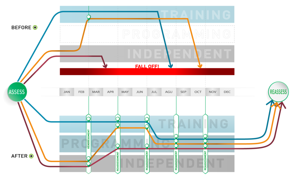 client flow through Trainer Plus app for personal trainers fitness programming online training
