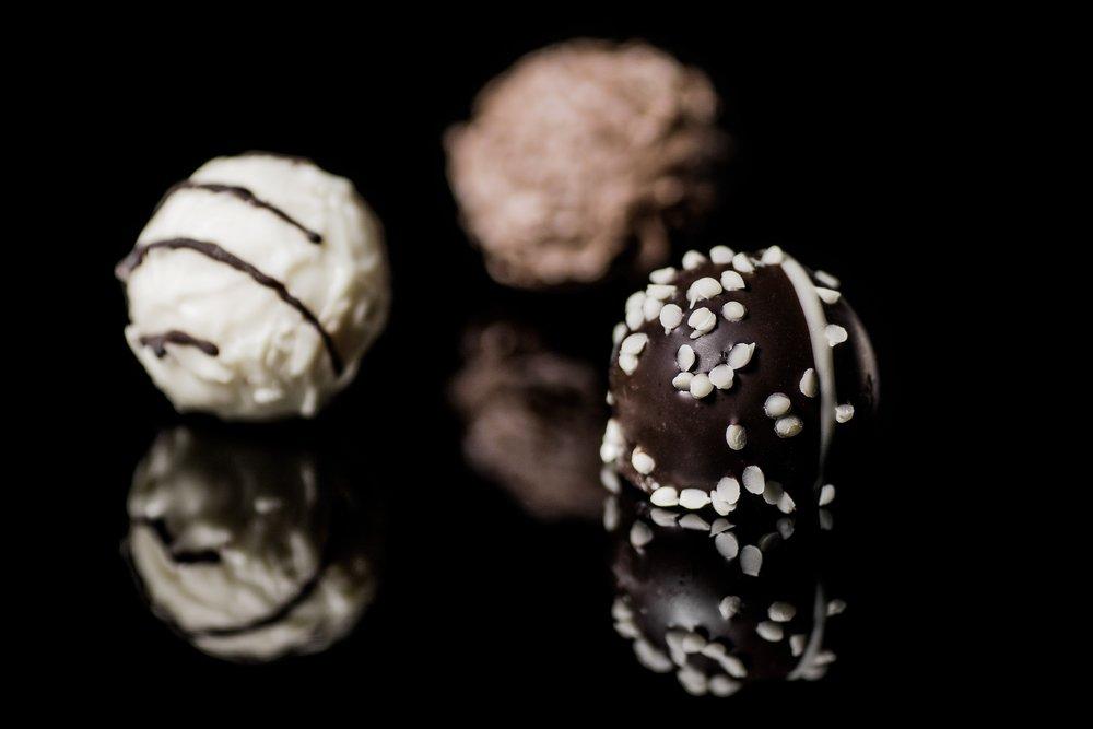 truffles_dog_birchbark
