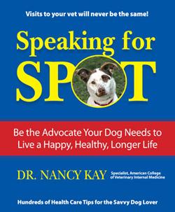 speaking for spot.jpg