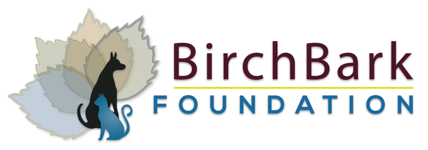 BirchBark Foundation