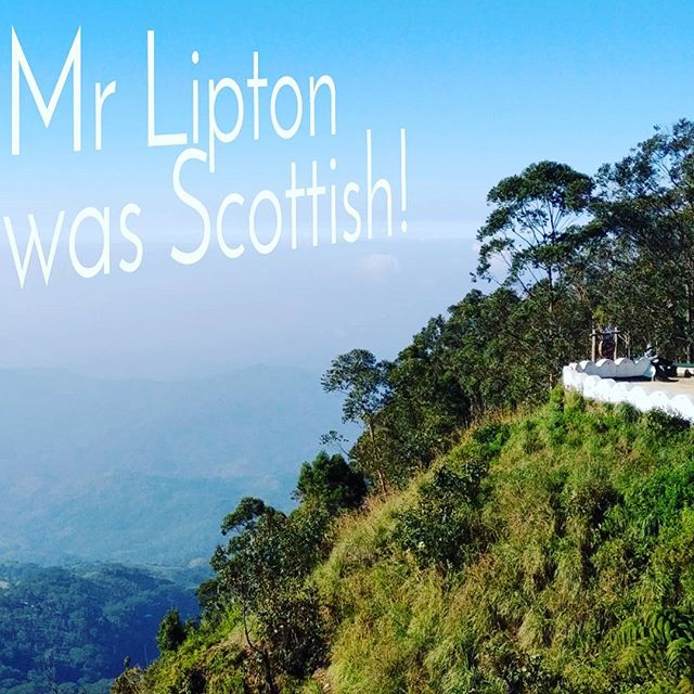 So here we were, drinking tea at the top of a tea plantation where  Lipton tea started, and I was tea spitting shocked to find out it was started by a Scottish guy! Any other mind bending moments to share Pathways Crew?