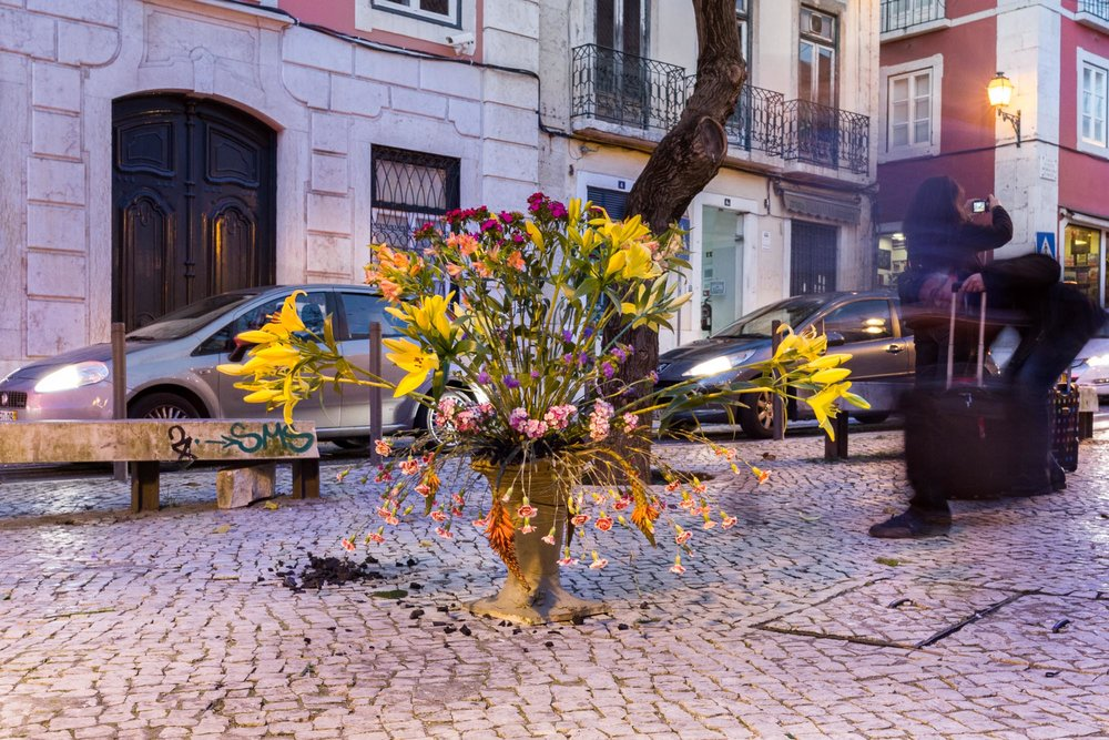 Flowers Arranged In Burning Charcoal   - 3 (Requiem) , 2014, 45 min.  Place:  Manpower - international art festival, Lisbon, PT  Material:  Flowers, burning charcoals, clayey unfired Lisbon soil, various props