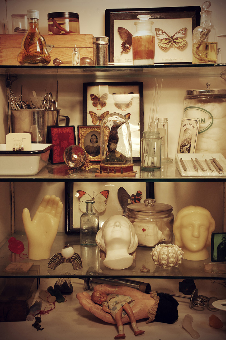 A New Museum for the Morbid Opens in Gowanus — ...