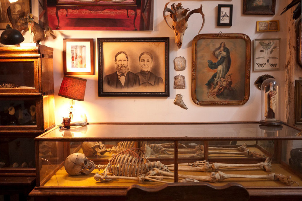 A New Museum For The Morbid Opens In Gowanus