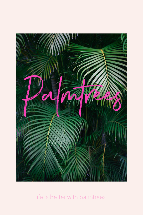 For the love of palm trees and Hawaii! #graphicdesign #design #palmtrees #tropical #dreamingofhawaii #hawaii #oahu