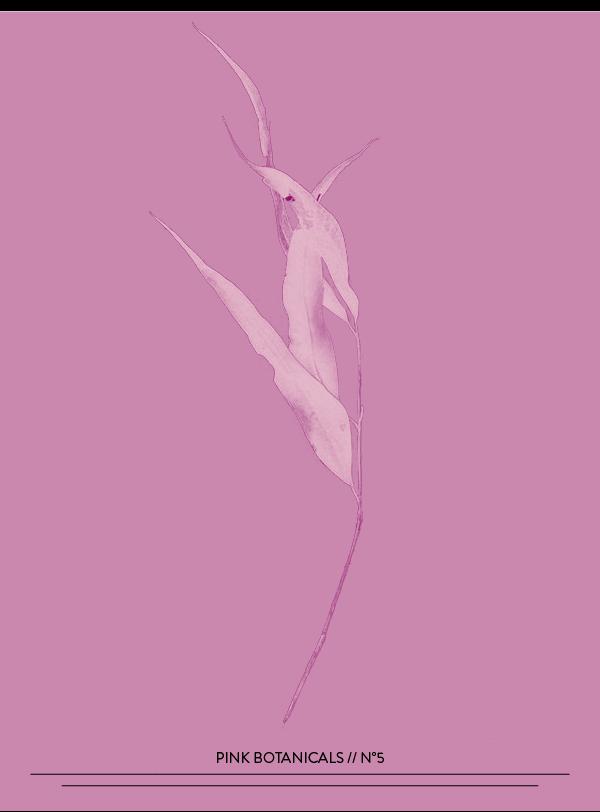 Pink Botanicals // No. 5 by Phylleli #design #graphicdesign #pinkbotanicals #designblog #typography #freelancedesigner #editorialdesign #magazinedesign #blog