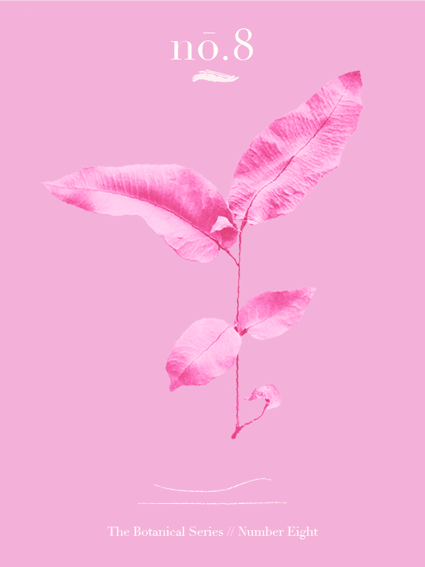 Pink Botanicals No.8 // The Botanical Series #design #graphicdesign #editorialdesign #artdirection #feminine #thinkpink #designer #freelancedesigner #designblog