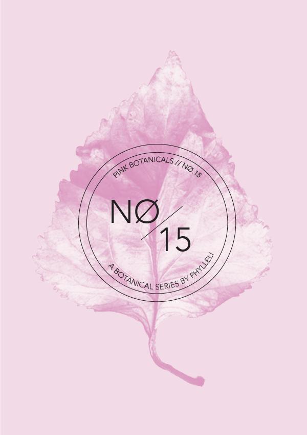 Pink Botanicals // No. 15 by Phylleli #design #graphicdesign #editorialdesign #artdirection #botanicals #pinkbotanicals #logodesign #branding #branddesigner #onlinebranding #brandstylist #designblog #blogger #typography #minimal