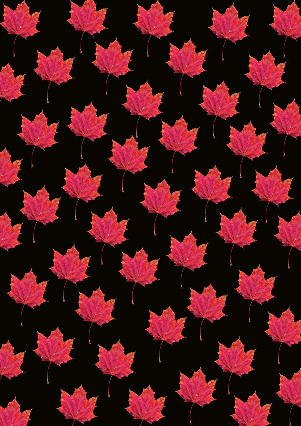 #fallpattern #patterndesign #phylleli #fallmood #graphicdesign #phonebackground #freelancer #botanicals