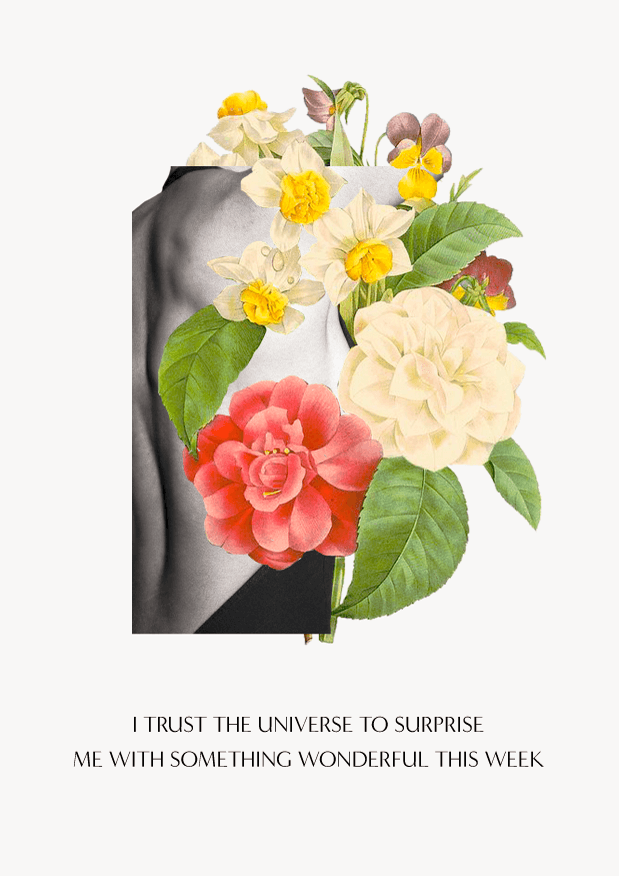 I trust the Universe to surprise me with something wonderful this week // affirmations