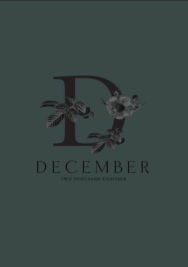 December Branding // Phylleli Design Studio and Blog