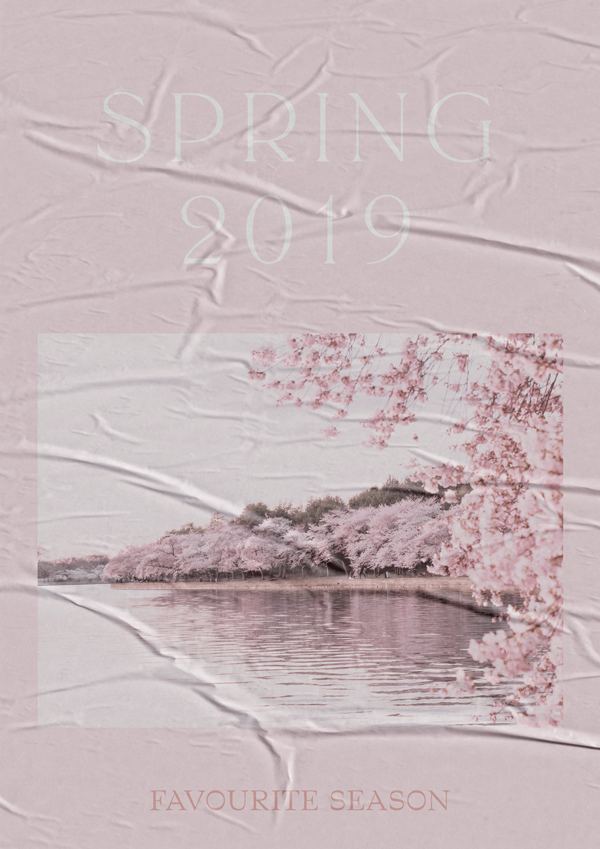 Spring 2019 // Phylleli Design Studio and Blog