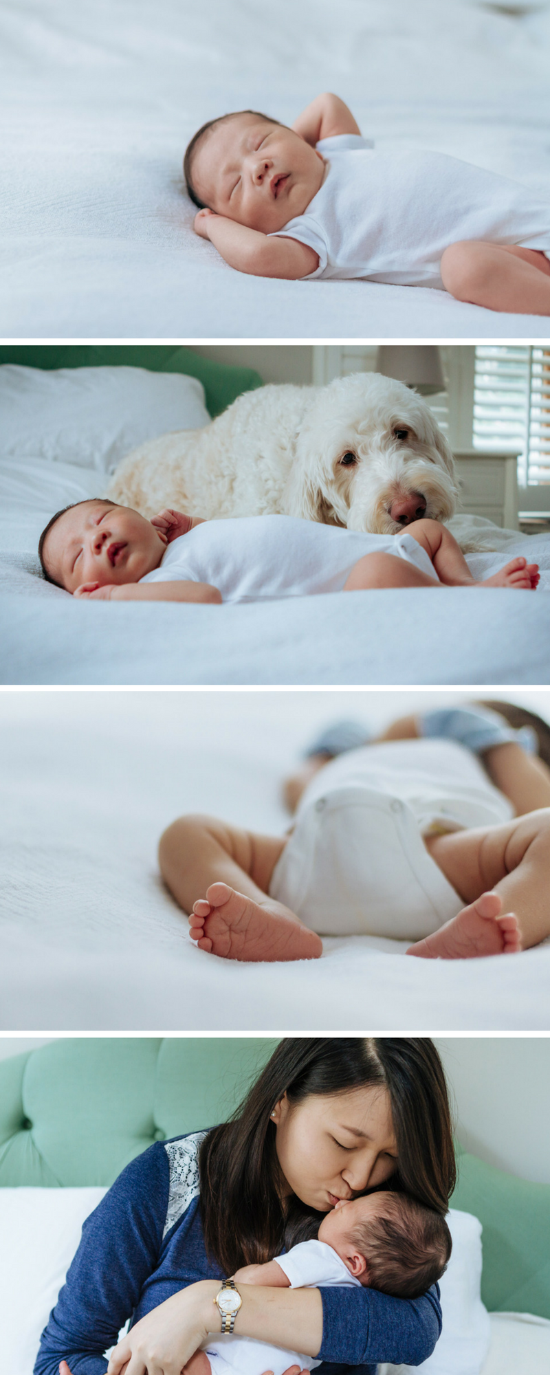 newborn lifestyle photography in fairfield, ct - laura barr photography