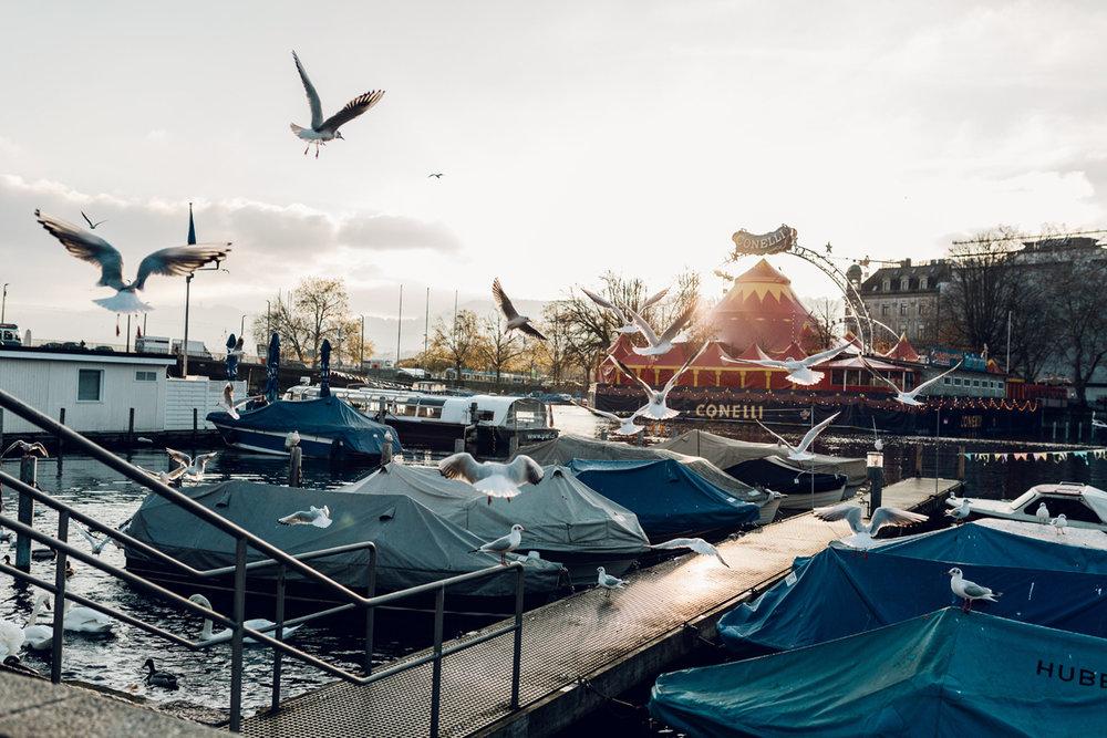 20171114_switzerland_0293.jpg