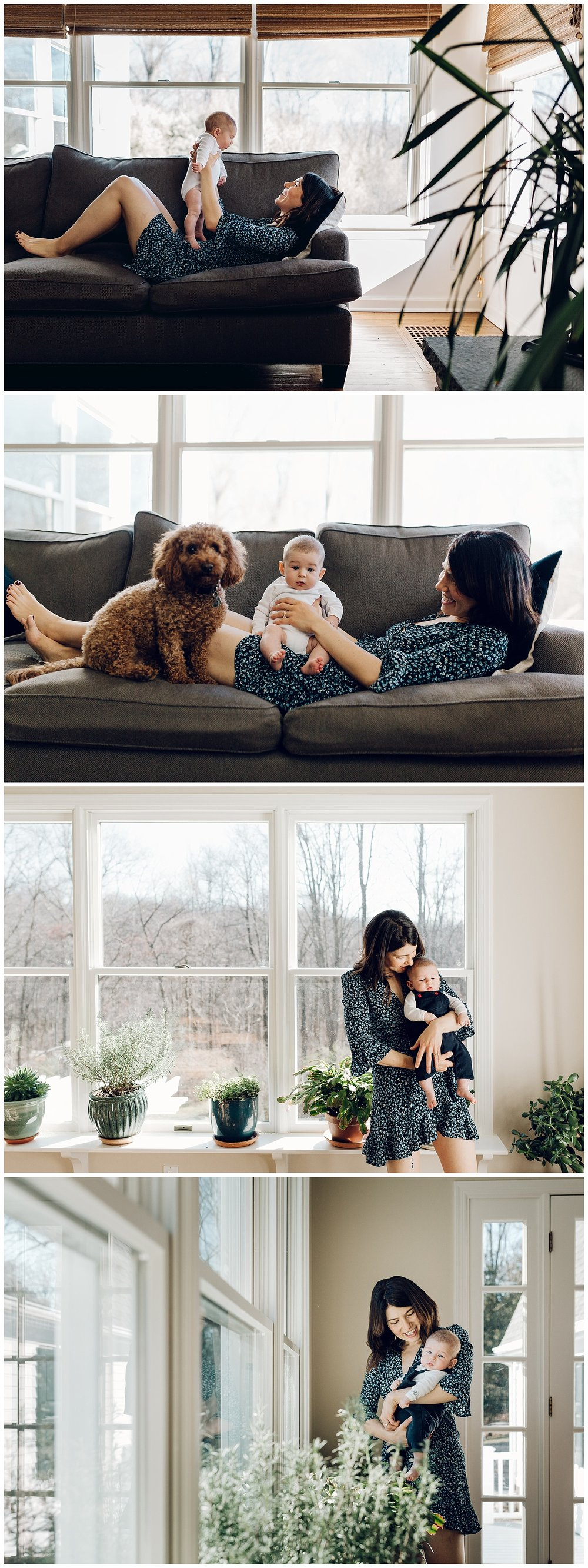 in home newborn session in fairfield county ct