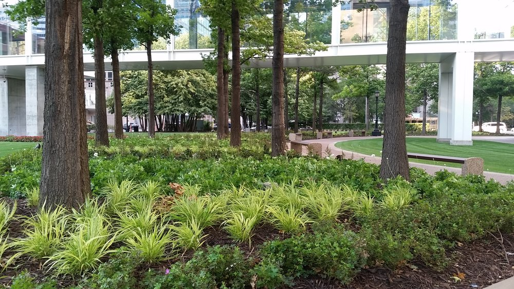 Corporate Plaza Garden