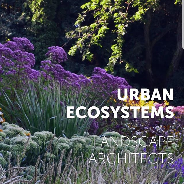 Hot off the press! www.urbanecosystemsinc.com Web design by @marit_emc2 #website #landarch #landscapearchitecture #design #graphicdesign
