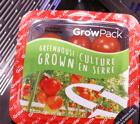 A plastic punnet of Tomatoes that has been sealed with GrowPack top sealing film.