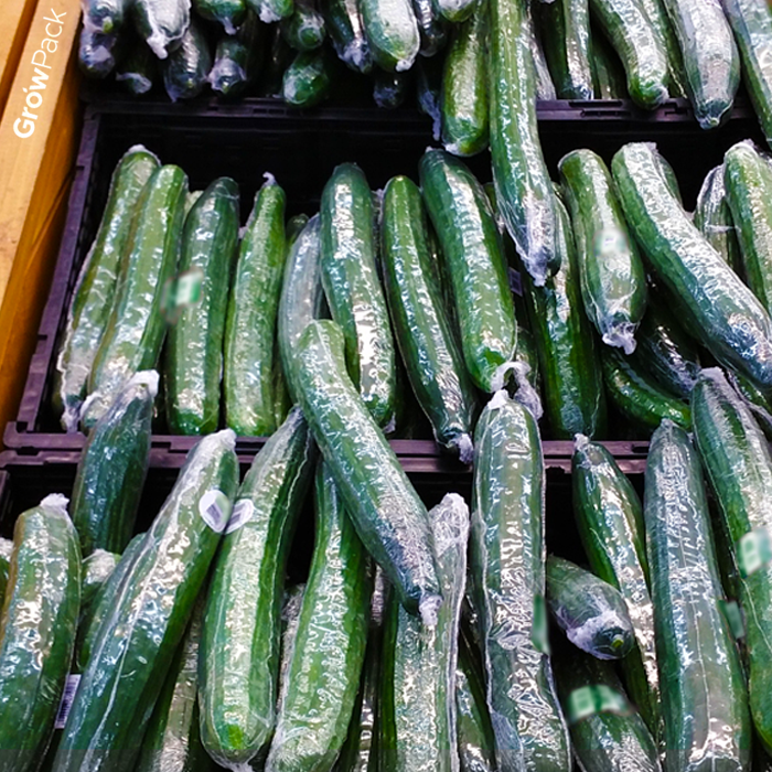 Fresh Cucumbers wrapped in GrowPack Produce Packaging shrink film on display on retail shelf.